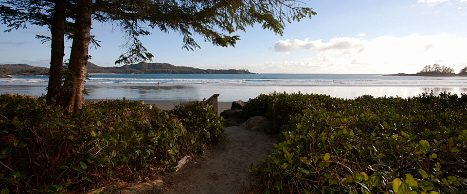 Stay on the beach in our deluxe oceanfront Tofino Accommodation - Tofino Accommodation